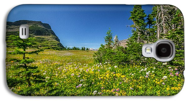 Abstracted Coneflowers Galaxy S4 Cases - Wild Flowers Glacier National PaintedPark   Galaxy S4 Case by Rich Franco