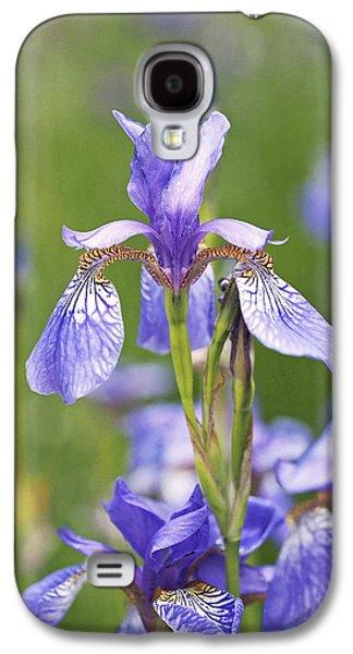 Green Galaxy S4 Cases - Wild Irises Galaxy S4 Case by Rona Black