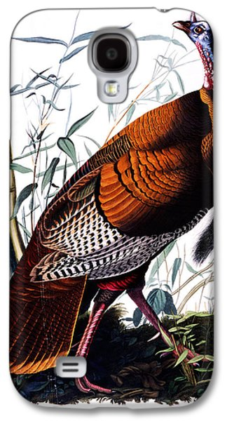 Architecture Acrylic Prints Galaxy S4 Cases - Wild male Turkey Galaxy S4 Case by Celestial Images