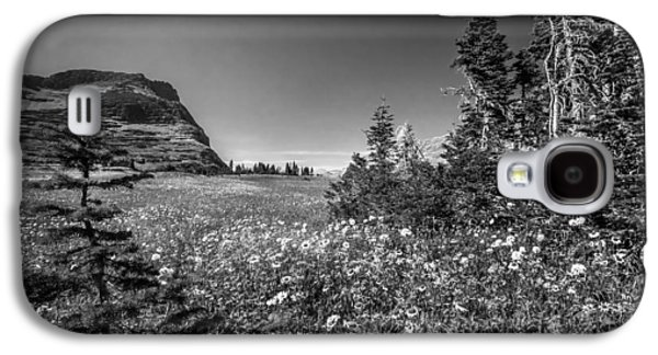 Abstracted Coneflowers Galaxy S4 Cases - Wild Mountain Flowers Glacier National Park Galaxy S4 Case by Rich Franco