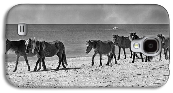 Harem Photographs Galaxy S4 Cases - Wild Mustangs of Shackleford Galaxy S4 Case by Betsy A  Cutler