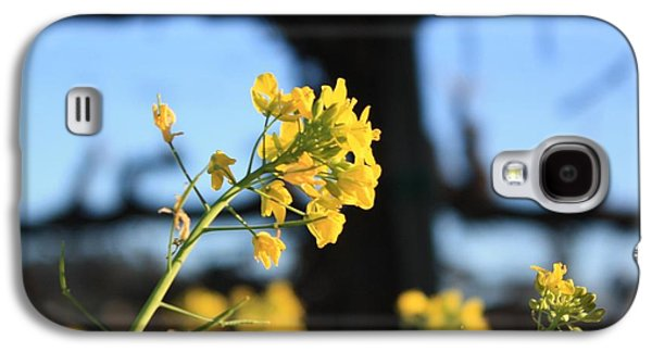 Vineyard In Napa Galaxy S4 Cases - Wild Mustard 2 Galaxy S4 Case by Penelope Moore