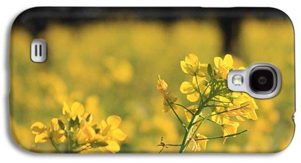 Vineyard In Napa Galaxy S4 Cases - Wild Mustard 3 Galaxy S4 Case by Penelope Moore