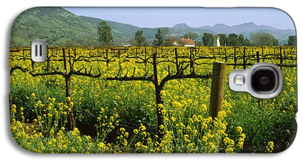 Winery Photography Galaxy S4 Cases - Wild Mustard In A Vineyard, Napa Galaxy S4 Case by Panoramic Images