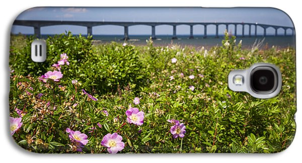 Landmarks Photographs Galaxy S4 Cases - Wild roses at Confederation Bridge Galaxy S4 Case by Elena Elisseeva