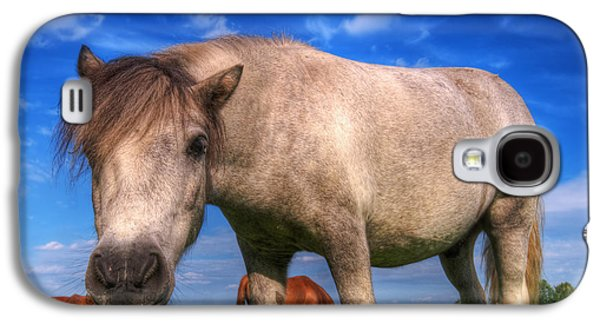 Buy Galaxy S4 Cases - Wild young horse on the field Galaxy S4 Case by Michal Bednarek