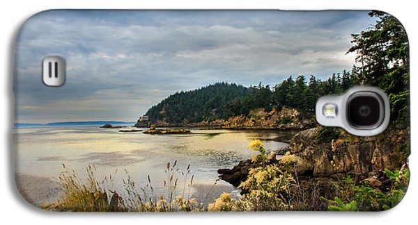 Seacape Galaxy S4 Cases - Wildcat Cove Galaxy S4 Case by Robert Bales