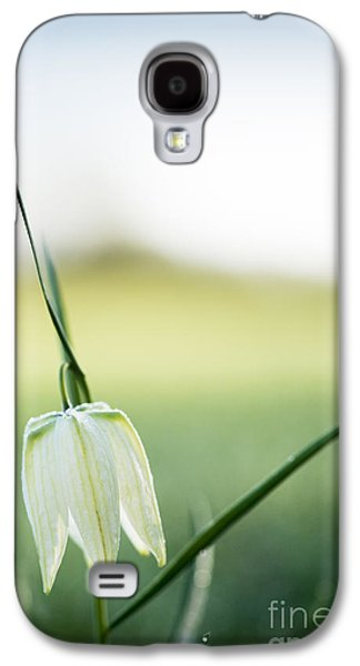 Meleagris Photographs Galaxy S4 Cases - Wildflower Fritillary Galaxy S4 Case by Tim Gainey