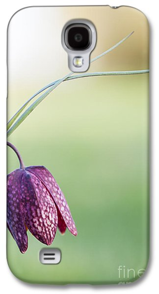 Meleagris Galaxy S4 Cases - Wildflower Snakes Head Fritillary Galaxy S4 Case by Tim Gainey