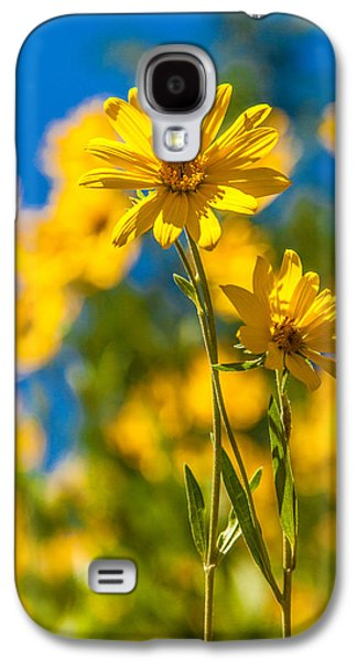 Idaho Photographs Galaxy S4 Cases - Wildflowers Standing Out Galaxy S4 Case by Chad Dutson