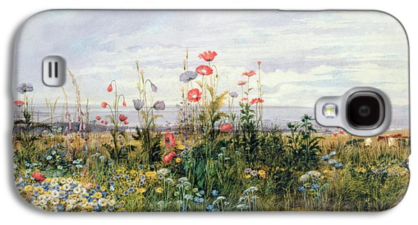 Watercolor Paintings Galaxy S4 Cases - Wildflowers with a View of Dublin Dunleary Galaxy S4 Case by A Nicholl