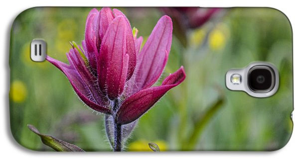 Photographs With Red. Galaxy S4 Cases - WIldflowers5 Galaxy S4 Case by Aaron Spong