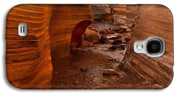 Haybale Photographs Galaxy S4 Cases - Willis Creek Slot Canyon Galaxy S4 Case by Robert Bales