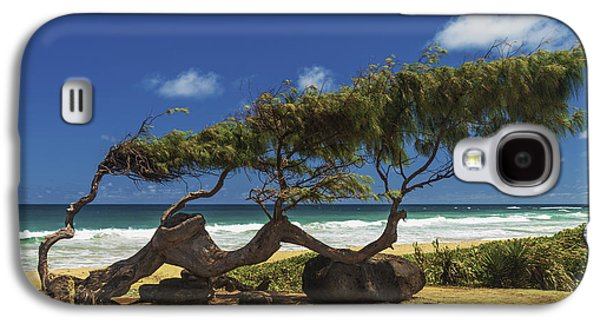 Wind Photographs Galaxy S4 Cases - Wind Blown Tree Galaxy S4 Case by Brian Harig