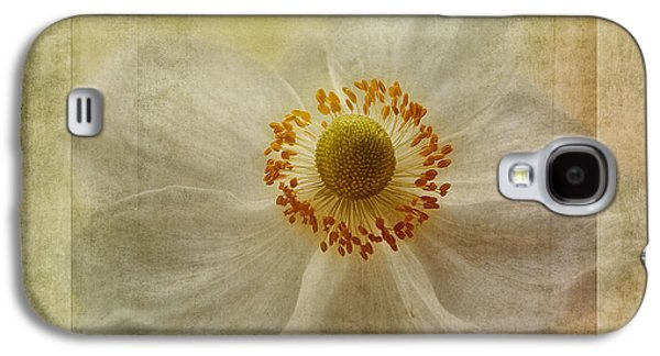 Close Focus Floral Galaxy S4 Cases - Windflower Textures Galaxy S4 Case by John Edwards