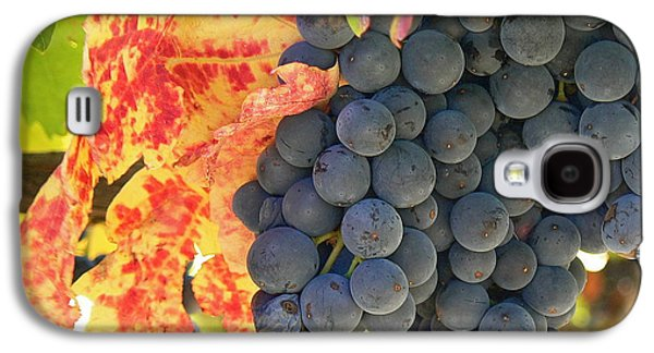 Cathar Country Galaxy S4 Cases - Wine Country Galaxy S4 Case by France  Art