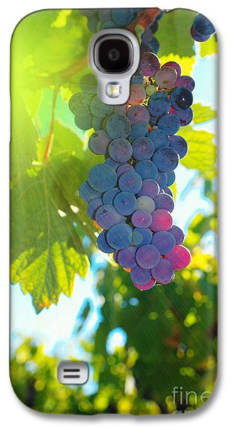 Wine Tasting Galaxy S4 Cases - Wine grapes  Galaxy S4 Case by Jeff  Swan