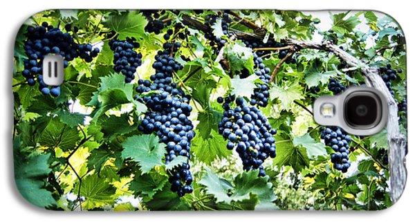 Wine On The Vine Galaxy S4 Case by Cricket Hackmann