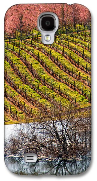 Stellenbosch Galaxy S4 Cases - Winelands in springtime Galaxy S4 Case by Dennis Cox WorldViews