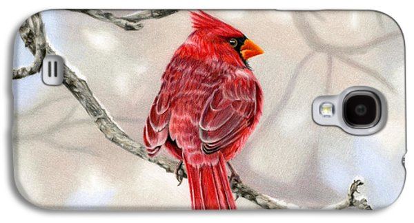 Feather Drawings Galaxy S4 Cases - Winter Cardinal Galaxy S4 Case by Sarah Batalka