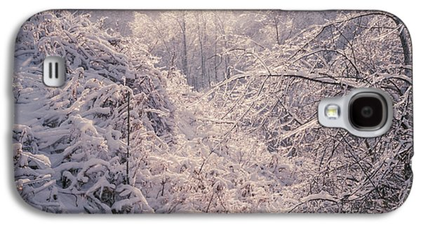 Winter Storm Photographs Galaxy S4 Cases - Winter forest after ice storm Galaxy S4 Case by Elena Elisseeva