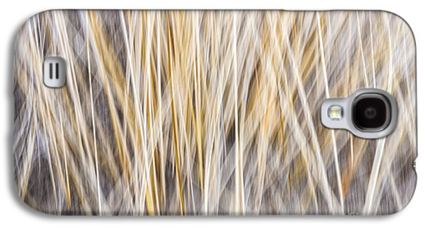 Fall Grass Galaxy S4 Cases - Winter grass abstract Galaxy S4 Case by Elena Elisseeva