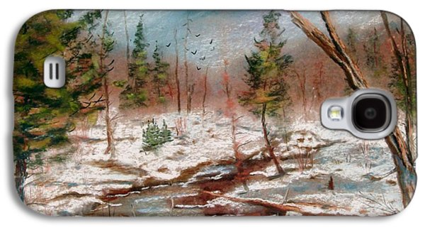 Etc. Pastels Galaxy S4 Cases - Winter in Canane Galaxy S4 Case by Bruce Schrader