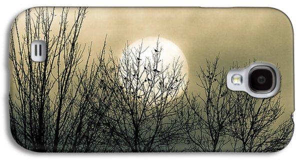 Loft Galaxy S4 Cases - Winter Into Spring Galaxy S4 Case by Bob Orsillo