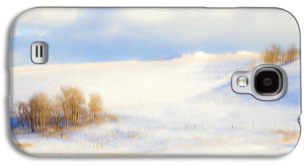 Snow Tree Prints Galaxy S4 Cases - Winter Poplars Galaxy S4 Case by Theresa Tahara