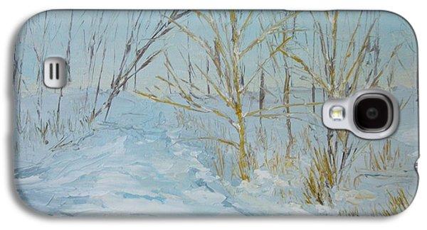 Dwayne Gresham Galaxy S4 Cases - Winter Scene Galaxy S4 Case by Dwayne Gresham