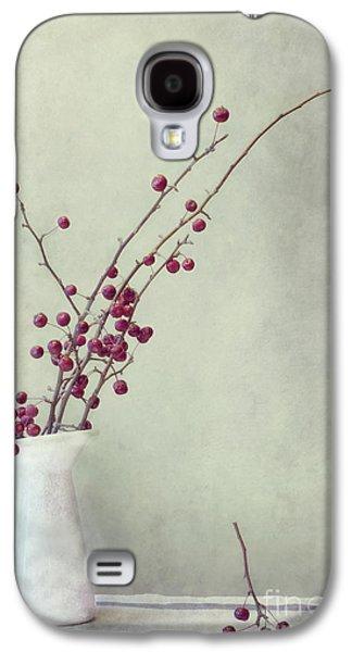 Red Photographs Galaxy S4 Cases - Winter Still Life Galaxy S4 Case by Priska Wettstein