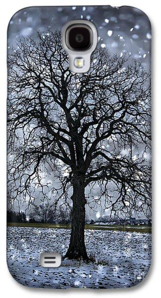 Snowy Evening Galaxy S4 Cases - Winter tree in snowfall Galaxy S4 Case by Elena Elisseeva