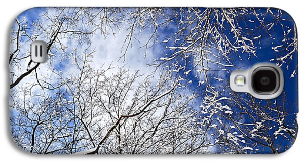January Galaxy S4 Cases - Winter trees and blue sky Galaxy S4 Case by Elena Elisseeva