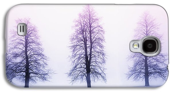 Trees Photographs Galaxy S4 Cases - Winter trees in fog at sunrise Galaxy S4 Case by Elena Elisseeva