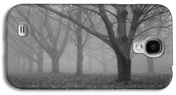 Winter Road Scenes Galaxy S4 Cases - Winter trees in the mist Galaxy S4 Case by Nomad Art And  Design