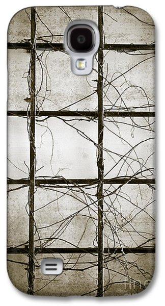 Tendrils Galaxy S4 Cases - Winter Trellis Galaxy S4 Case by Edward Fielding