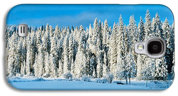 Winter Wawona Meadow Yosemite National Galaxy S4 Case by Panoramic Images