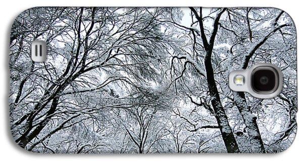 Winter Trees Photographs Galaxy S4 Cases - Winter Wonder Galaxy S4 Case by Jeff Klingler