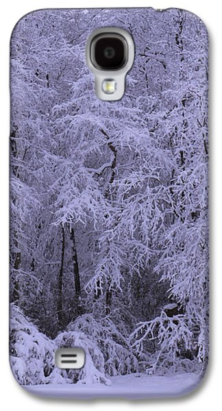 Winter Digital Art Galaxy S4 Cases - Winter Wonderland 1 Galaxy S4 Case by Mike McGlothlen