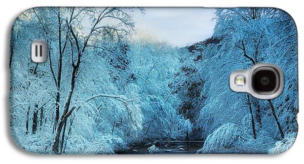 Nature Scene Photographs Galaxy S4 Cases - Winter Wonderland Galaxy S4 Case by Thomas Schoeller