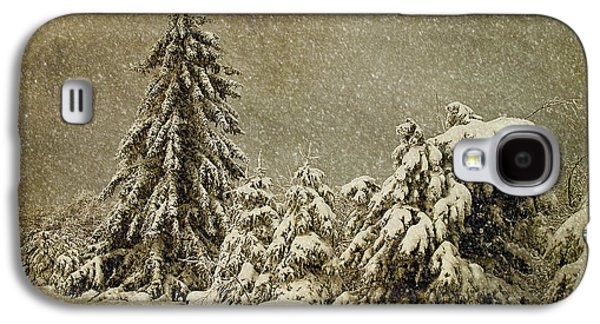 Trees In Snow Galaxy S4 Cases - Winters Wrath Galaxy S4 Case by Lois Bryan