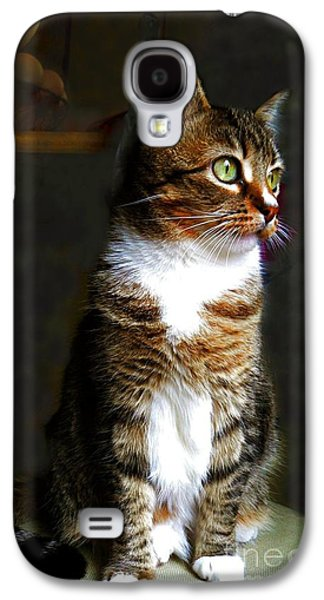Wistful  Galaxy S4 Case by Diana Besser