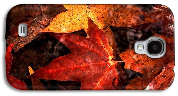 Edwin Warner Park Galaxy S4 Cases - With Love - Autumn Pond Galaxy S4 Case by Theresa  Asher