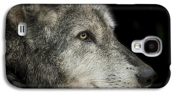 Grey Photographs Galaxy S4 Cases - Wolf Galaxy S4 Case by Paul Neville