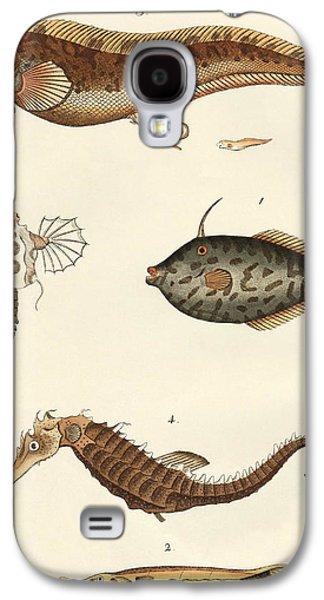 Aquatic Drawings Galaxy S4 Cases - Wonderful fish Galaxy S4 Case by German School