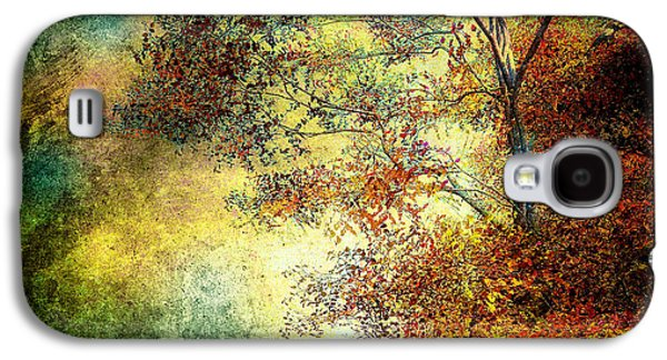 Autumn Landscape Photographs Galaxy S4 Cases - Wondering Galaxy S4 Case by Bob Orsillo