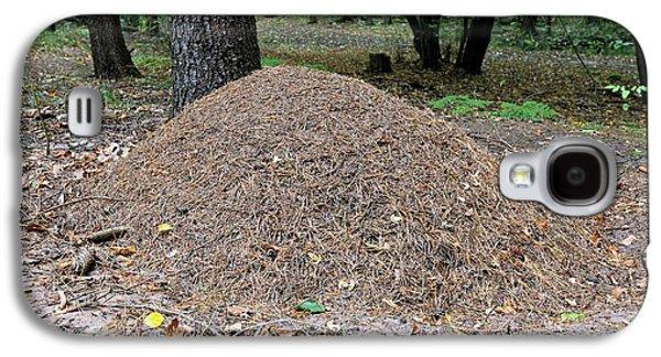 Wood Ant Nest Galaxy S4 Case by Bildagentur-online/mcphoto-schulz