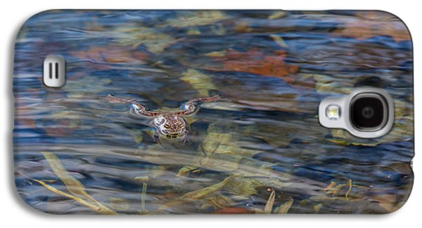 Frogs Photographs Galaxy S4 Cases - Wood Frog Galaxy S4 Case by Bill  Wakeley
