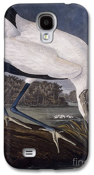 Feather Drawings Galaxy S4 Cases - Wood Ibis Galaxy S4 Case by John James Audubon