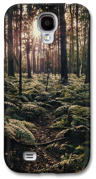 Forest Floor Galaxy S4 Cases - Woodland Trees Galaxy S4 Case by Amanda And Christopher Elwell